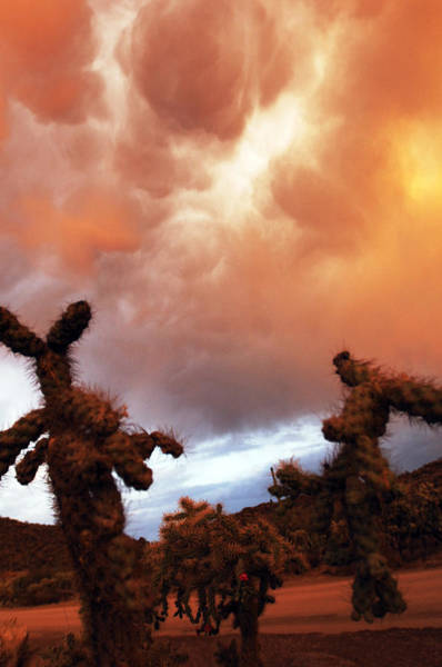 Photograph - Roiling Sky by Jill Reger