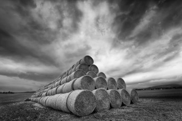 Wall Art - Photograph - Rollers by Piotr Krol (bax)