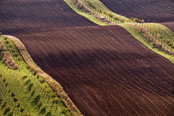 Photograph - Rolling Hills In Moravia #3 by Stuart Litoff