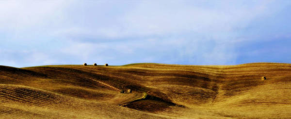 Photograph - Rolling Hills Of Hay by Marilyn Hunt