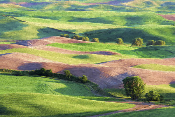 Farming Digital Art - Rolling Hillsides II by Jon Glaser