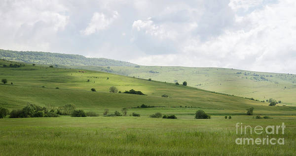 Art Print featuring the photograph Rolling Landscape, Romania by Perry Rodriguez