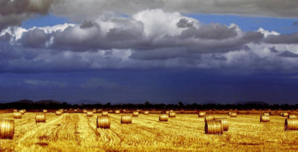 Hay Bale Wall Art - Photograph - Rolling On by Holly Kempe