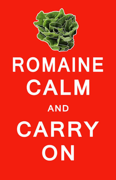 Wall Art - Digital Art - Romaine Calm And Carry On by Daniel Hagerman
