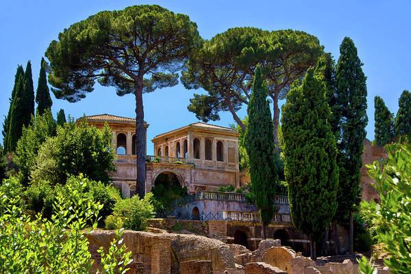 Photograph - Roman Forum Hillside  by Harry Spitz