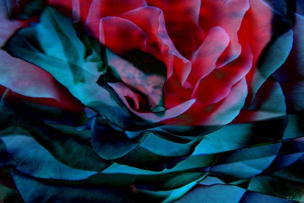 Mixed Media - Romance - Abstract Art by Jaison Cianelli