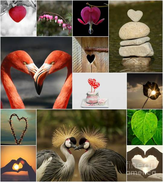 Painting - Romance Collage by Celestial Images