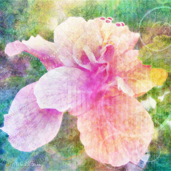 Digital Art - Romance Of Flowers by Barbara Berney