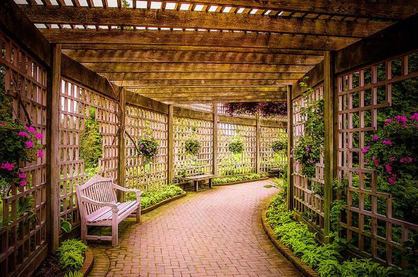 Chicago Botanic Garden Photograph - Romance Under The Arbor by Julie Palencia