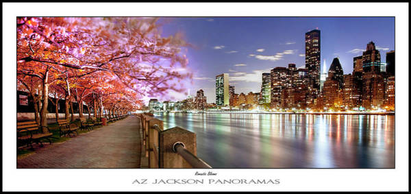 Roosevelt Island Wall Art - Photograph - Romantic Blooms Poster Print by Az Jackson