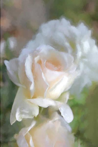 Wall Art - Photograph - Romantic Peach Roses by Jennie Marie Schell