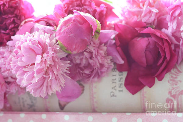 Peonies Photograph - Romantic Pink Red Peonies - Shabby Chic Red Paris Pink Peonies by Kathy Fornal