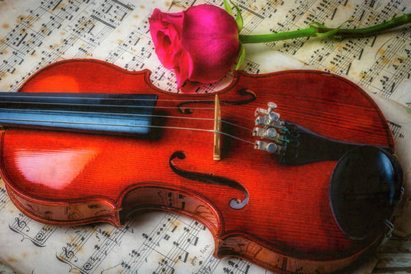 Bluegrass Photograph - Romantic Violin And Rose by Garry Gay