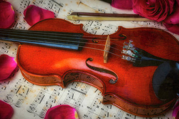 Frets Photograph - Romantic Violin by Garry Gay