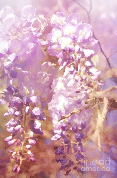 Photograph - Romantic Wisteria by Andrea Anderegg