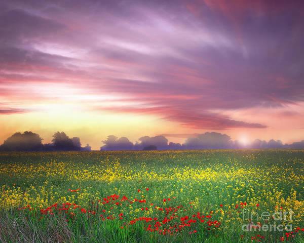 Photograph - Romney Marsh by Edmund Nagele