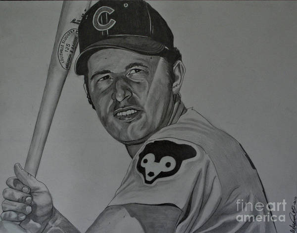Drawing - Ron Santo Portrait by Melissa Jacobsen
