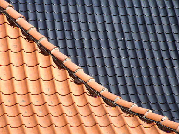 Photograph - Roof Tiles by Helen Northcott