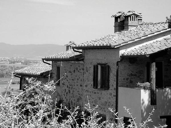 Chimnies Photograph - Roofs With A View by Dorothy Berry-Lound