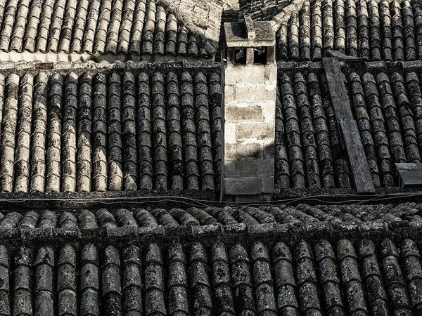 Photograph - Old Tile Roofs Of Matera by Robin Zygelman