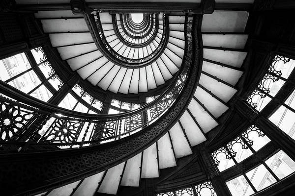 Photograph - Rookery Black And White by Ryan Smith
