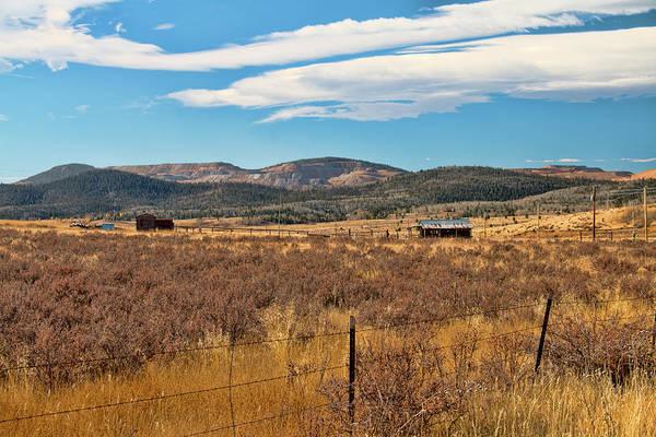 Photograph - Room To Roam - Colorado by Kristia Adams