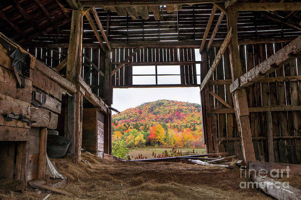 Wall Art - Photograph - Room With A View by Benjamin Williamson