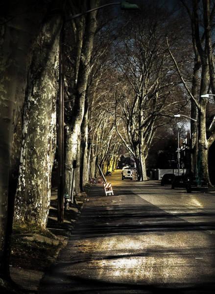 Photograph - Roosevelt Avenue II by Leon De Vose