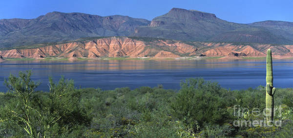 Wall Art - Photograph - Roosevelt Lake - Panoramic by Sandra Bronstein
