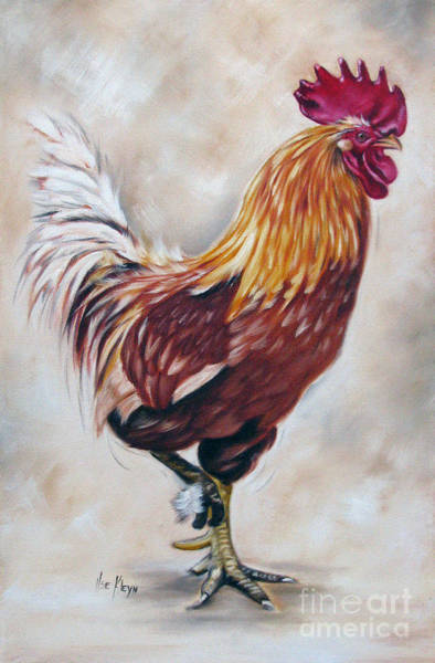 Wall Art - Painting - Rooster 21 Of 10 by Ilse Kleyn