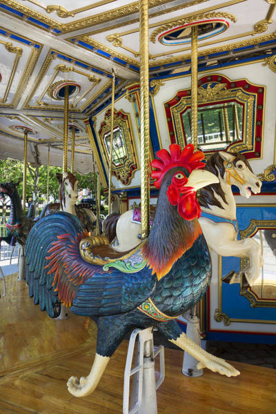 Photograph - Rooster Coop Kids Ride by Carlos Diaz