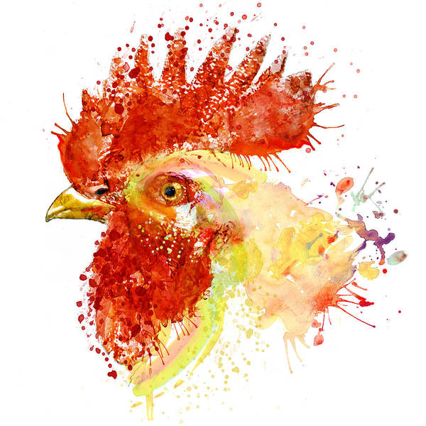 Zoology Painting - Rooster Head by Marian Voicu