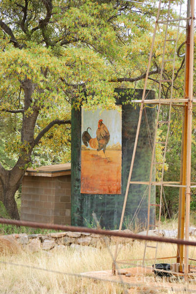 Photograph - Rooster Water Tank by Donna Greene