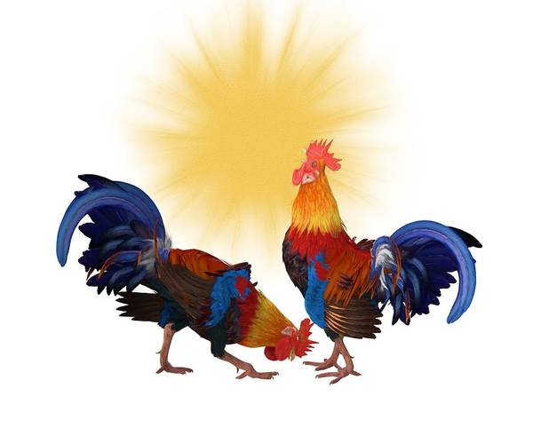 Digital Art - Roosters And Sun by Ericamaxine Price