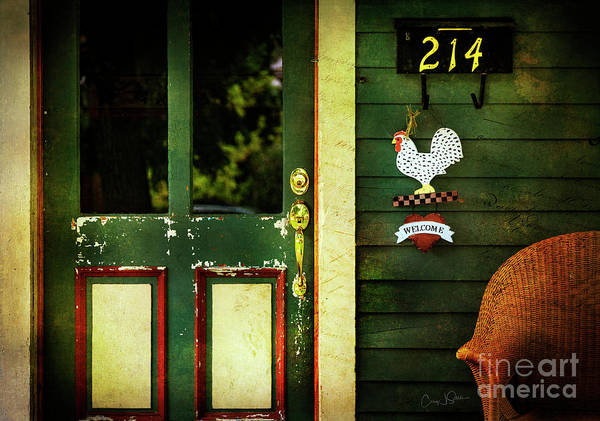 Photograph - Rooster's Roost by Craig J Satterlee