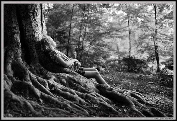 Photograph - Roots Of Contemplation by Ray Tapajna