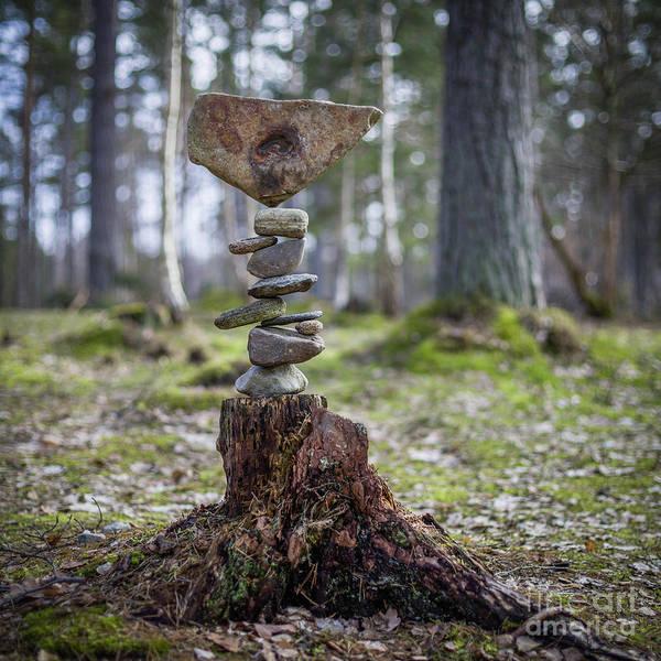 Sculpture - Roots by Pontus Jansson