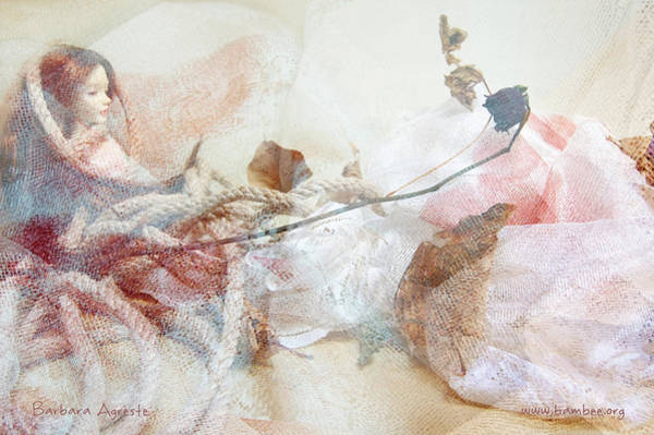 Fairy Pools Digital Art - Rope And Nails by Barbara Agreste