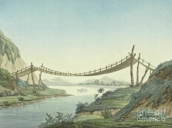 Wall Art - Painting - Rope Bridge Near Penipe by Friedrich Alexander  Baron von Humboldt
