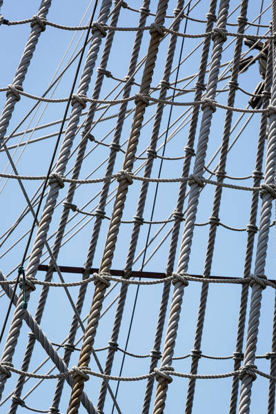 Photograph - Rope Ladder by Dale Kincaid