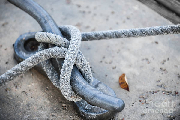 Rigging Photograph - Rope On Cleat by Elena Elisseeva