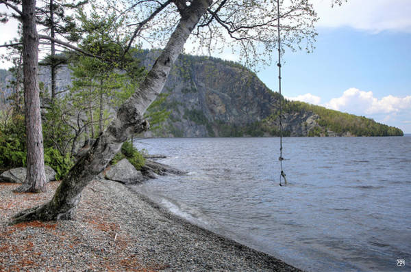 Photograph - Rope Swing by John Meader