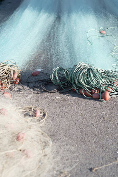 Photograph - Rope Vision by Jean Gill