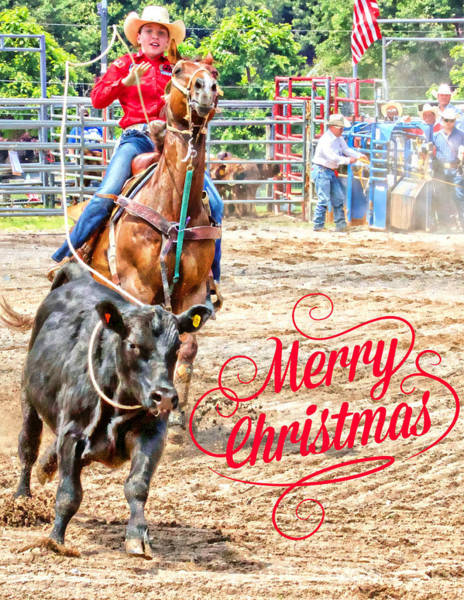Photograph - Roper Merry Christmas by Alice Gipson