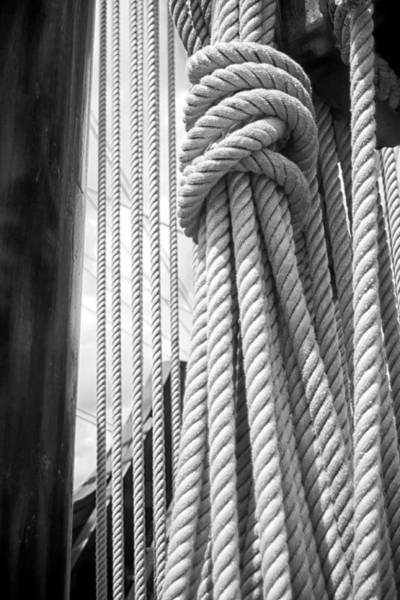 Photograph - Ropes From The Past by Bob Decker