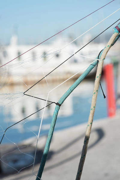 Photograph - Ropes by Jean Gill