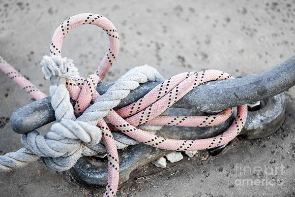 Wall Art - Photograph - Ropes On Cleat by Elena Elisseeva