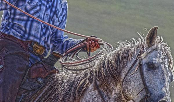 Photograph - Ropin It Rough by Amanda Smith