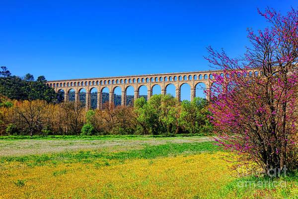 Wall Art - Photograph - Roquefavour Aqueduct by Olivier Le Queinec