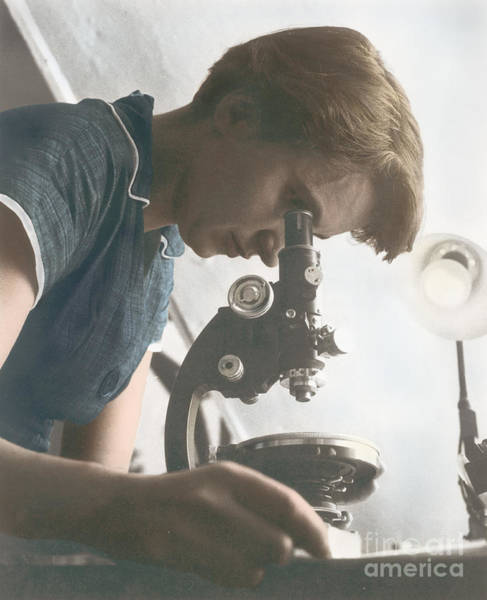 Researcher Wall Art - Photograph - Rosalind Franklin, Crystallographer by Science Source